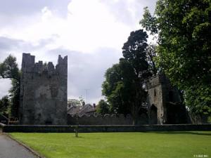 monkstown castle 2